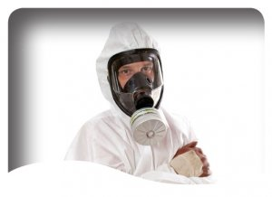 non licensed asbestos removal (category b) training