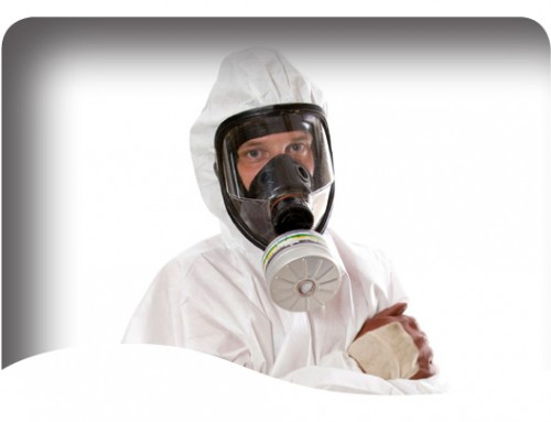 Essex school fined for failure to identify and manage Asbestos